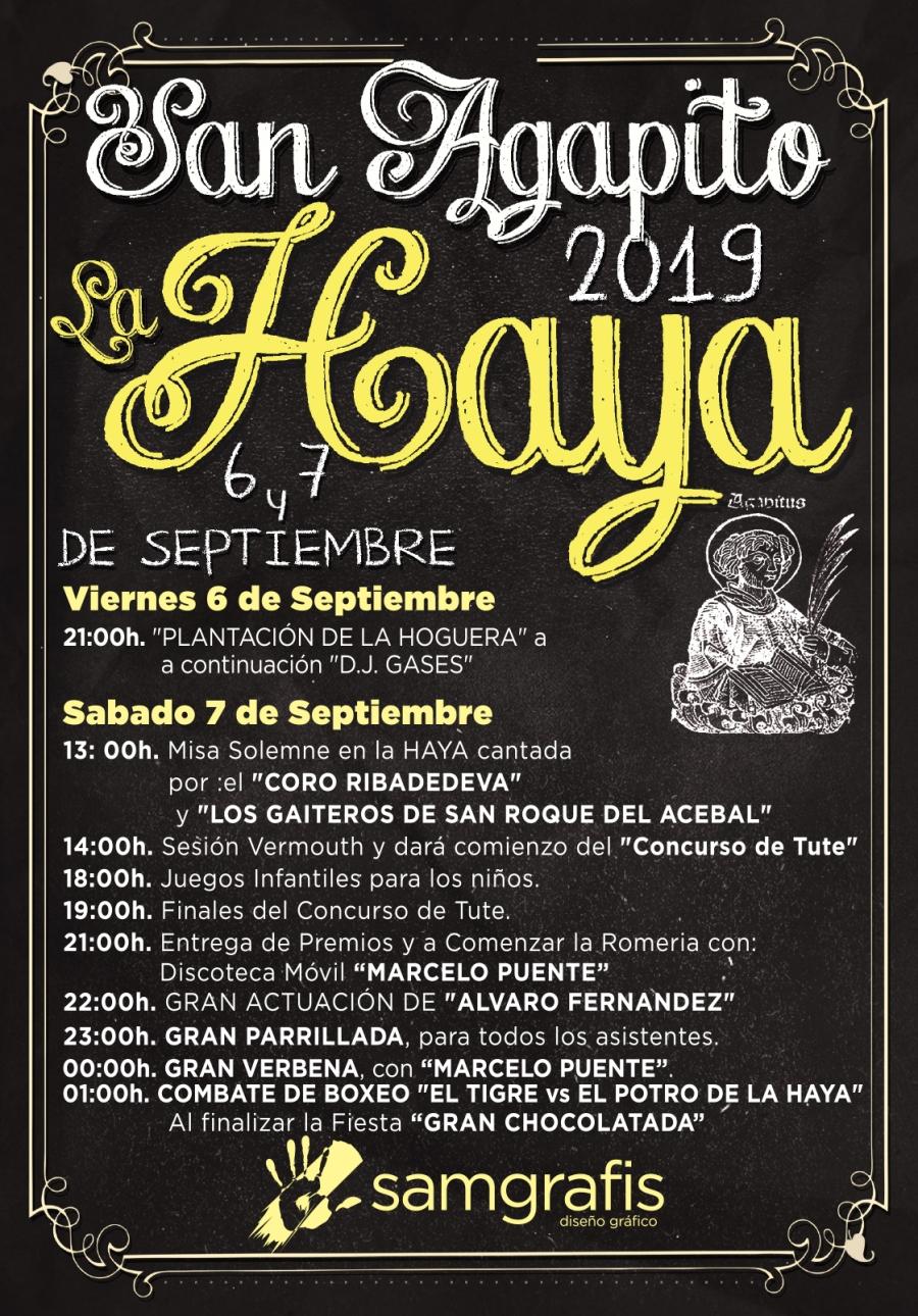 Cartel la Haya 2019 ok.jpg